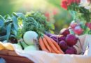 Stronger focus on nutrition could save 3.7 million lives by 2025: WHO
